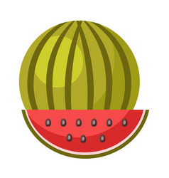 Whole ripe watermelon and small slice isolated vector