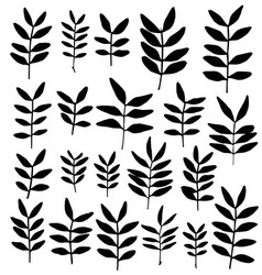 Set of branch silhouettes with leaves vector