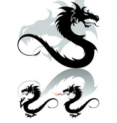 dragon tattoo vector image