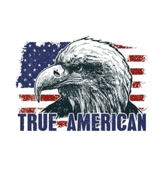American eagle against usa flag vector