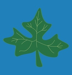 Fresh papaya leaf on blue background vector