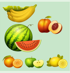 fresh watermelon realistic juicy fruits slice vector image