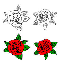 hand drawn roses coloring page vector image vector image