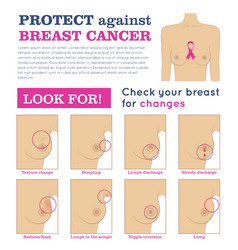 protection breast cancer infographic vector image