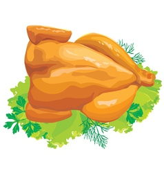 roast chicken with herbs vector image