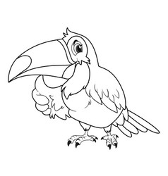 animal outline for toucan bird vector image vector image