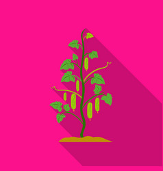 cucumber icon flat single plant icon from the big vector image