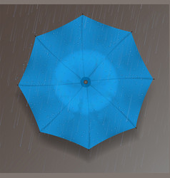 the top of the umbrella vector image vector image