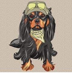 Hipster black dog cavalier king charles spaniel vector