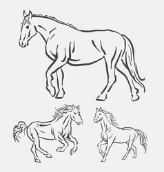 Horse activity pet animal line art style vector