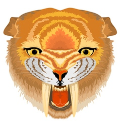Samilodon sabre tooth cat vector