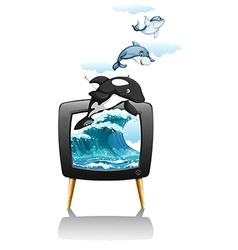 Dolphines swimming and jumping on TV vector image