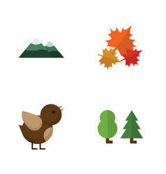 flat icon nature set of canadian forest bird and vector image