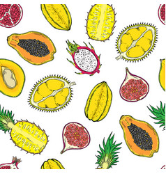 pattern of exotic fruits on a wight background vector image