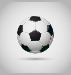 realistic soccer or football ball on white vector image
