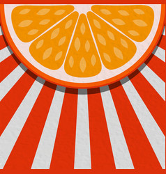 Summer background with orange fruit vector