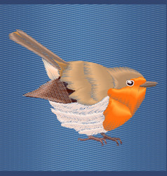 Embroidery robin bird on blue denim background vector