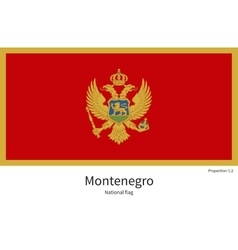 National flag of montenegro with correct vector