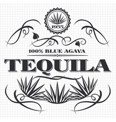 Alcohol drink tequila banner design vector