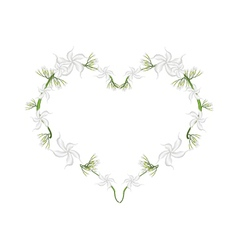 Cape Jasmine Flowers in A Heart Shape vector image