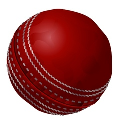 Old and vintage traditional cricket ball vector