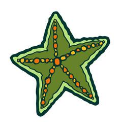 green marine starfish vector image