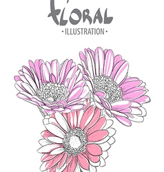Beautiful gerbera vector image vector image