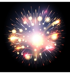 Bursting firework vector image
