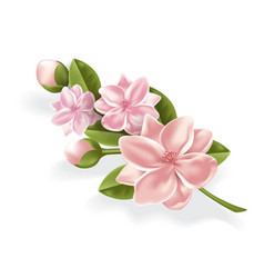 realistic pink flower cherry lotos branch vector image vector image