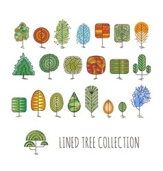 Set of colorful lined trees simple style vector