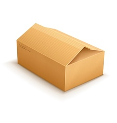 Opening cardboard delivery vector