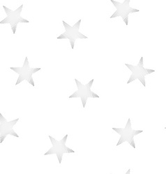 Silver stars embroidery stitching seamless pattern vector