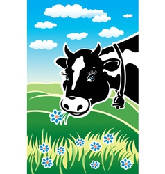 Kind cow on a meadow vector image vector image