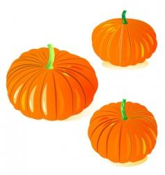 pumpkinxaxapumpkinxaxapumpkinxaxa vector image vector image