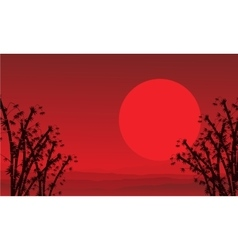 On red background bamboo scenery vector