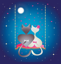 Male cat and pussycat at night vector