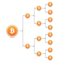 Bitcoin organization tree chart vector