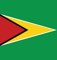Guyana flag for independence day and infographic vector