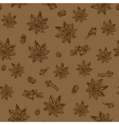 Seamless seasoning pattern with star anise and vector