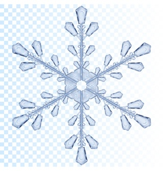 Transparent snowflake vector image vector image