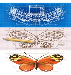 Creative architectural banners with a butterfly vector image