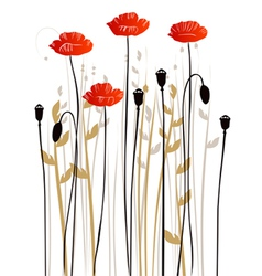 Floral background poppies vector