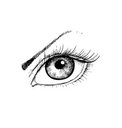 female eye with hand- drawing style vector image vector image
