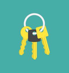 Keys on key ring vector