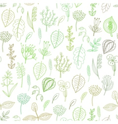 Seamless pattern of plants and herbs floral vector