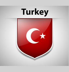 Badge design for turkey flag vector