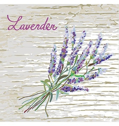 Lavender rustic background with nice design - vector