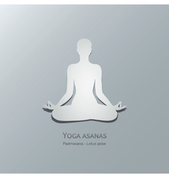 Yoga asanas padmasana lotus pose vector