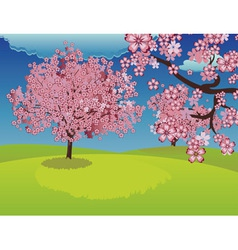Blooming sakura tree on lawn vector