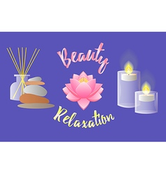 Accessories for beauty salon relaxation aromathera vector